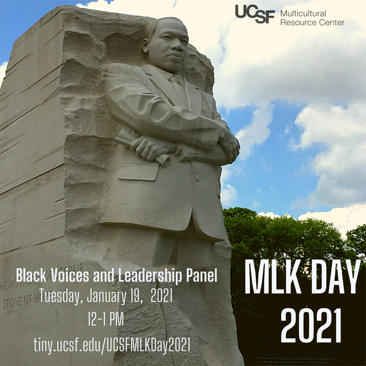 MLK Day 2021: Black Voices & Leadership Panel, Tues, Jan. 19, noon - 1 pm